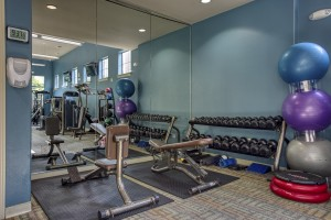 Two Bedroom Apartments for Rent in San Antonio, TX - Fitness Center (2)