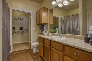 Two Bedroom Apartments for Rent in San Antonio, TX - Model Bathroom