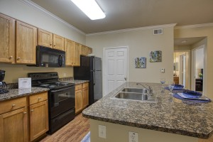Two Bedroom Apartments for Rent in San Antonio, TX - Model Kitchen