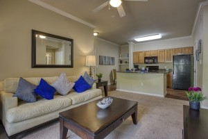 Two Bedroom Apartments for Rent in San Antonio, TX - Model Living Room & Kitchen